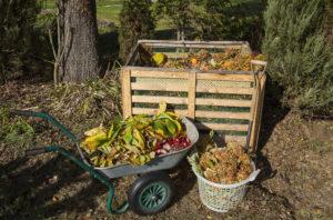 Kompost richtig verwenden
