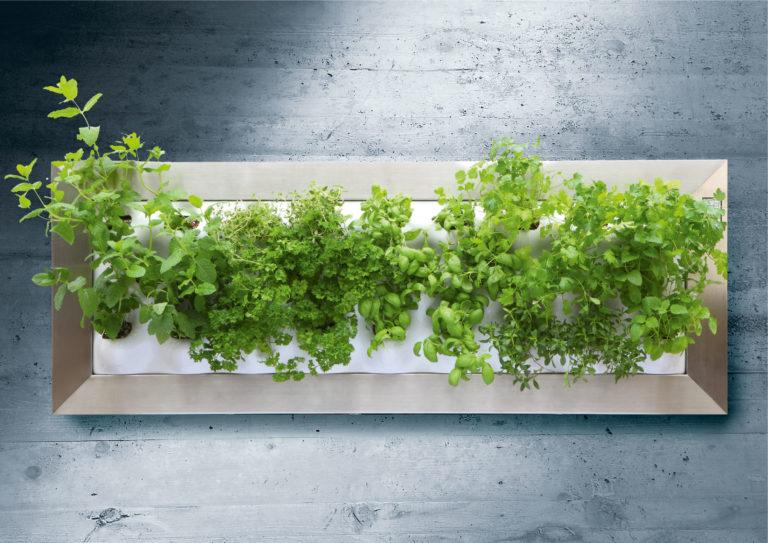 Vertikalbepflanzung