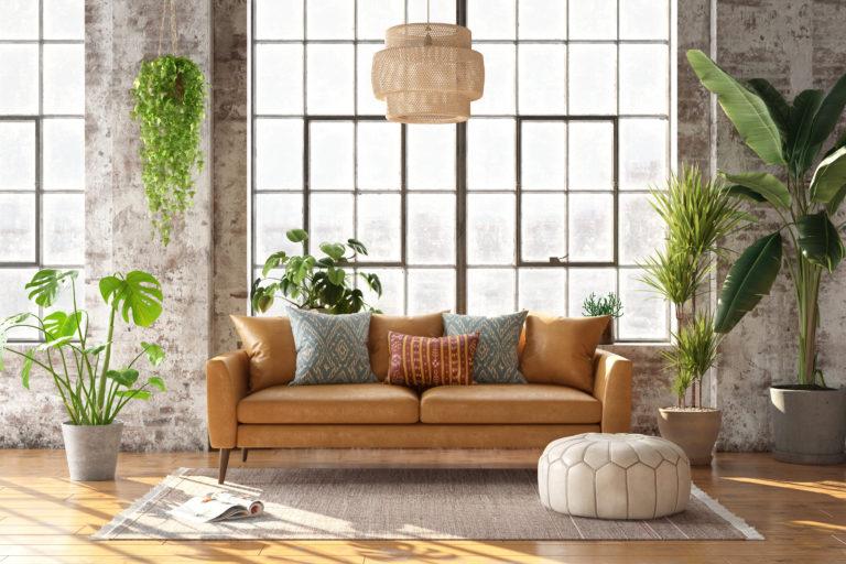 Pflanzen im Raum